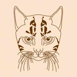 Como Desenhar Um Gato Selvagem Tatoo Arte E Cia Brasil