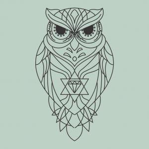 Como Desenhar Uma Coruja Tatoo Arte E Cia Brasil