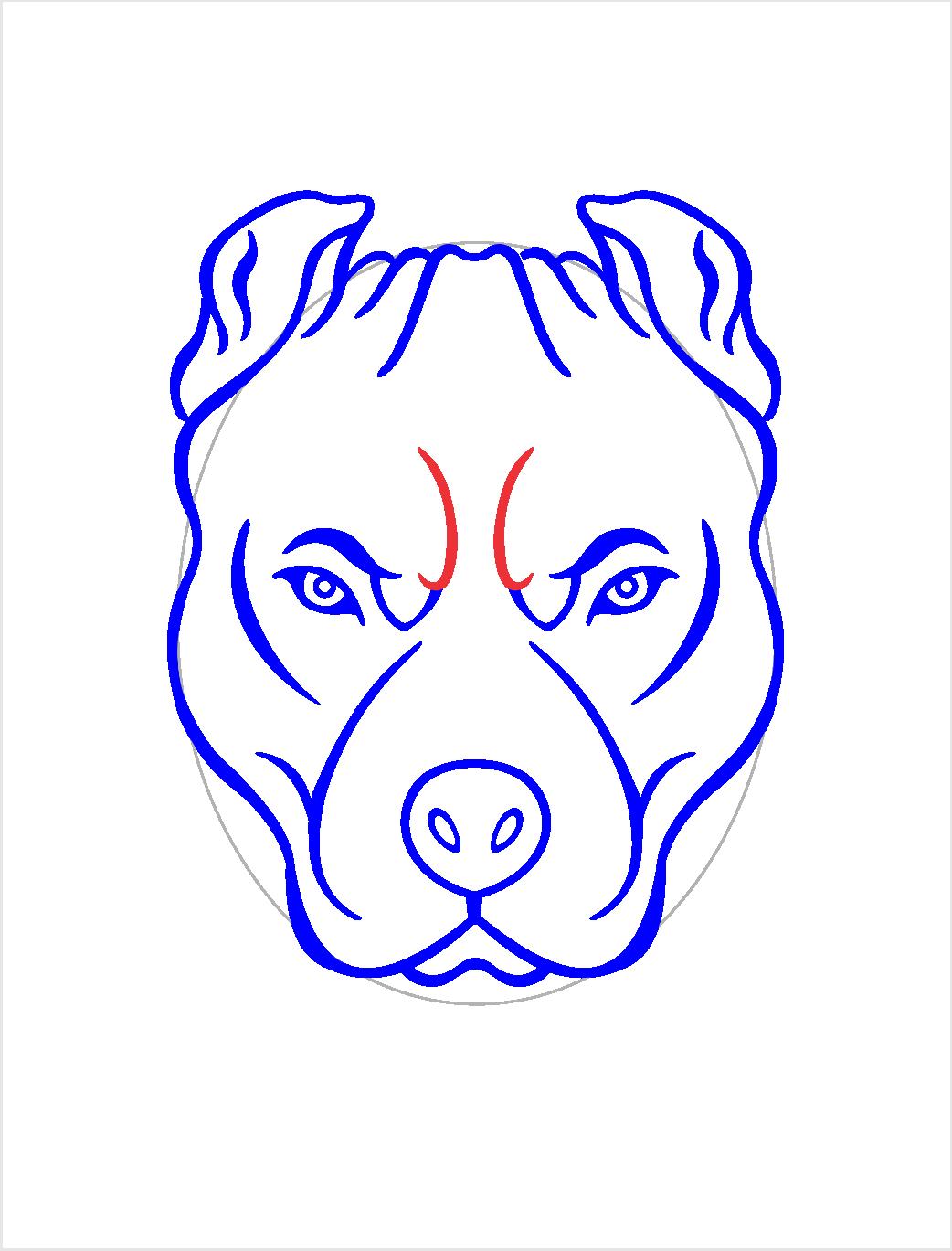 Como Desenhar Um Cahorro Pitbull Arte E Cia Brasil